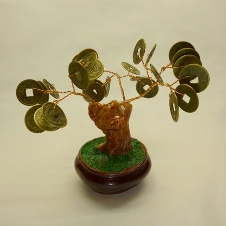 Bonsai moneytree
